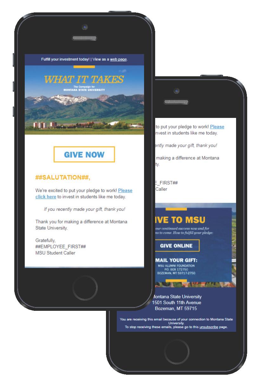 Higher education marketing awards winner: Montana State University