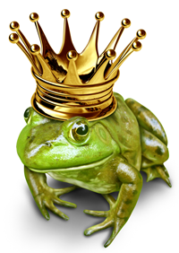 """This photo of a """"frog prince"""" represents the metaphorical connection between kissing frogs and them becoming princes and a college or university structuring their student search process."""