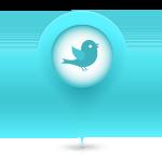 tweet_pin