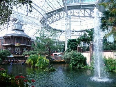 Make accommodations at the Gaylord Opryland Resort