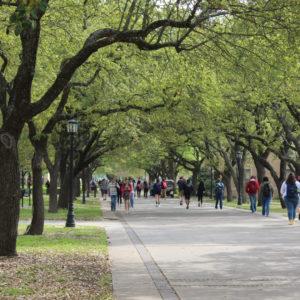 Austin College campus