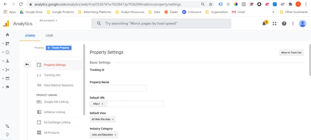 Google Analytics: Defaut URL