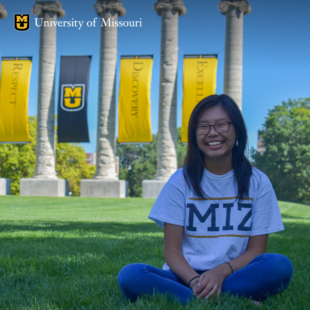 Digital Advertising for Fundraising: an example of a Mizzou